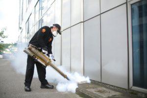 Primosal ofera servicii de dezinsectie dezinfectie deratizare